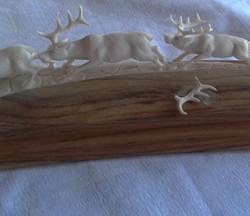 Deer group 4